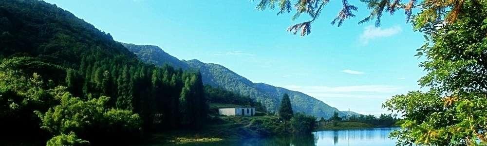 茂名地标风景照片