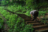 残疾人为捐款爬行10公里山路